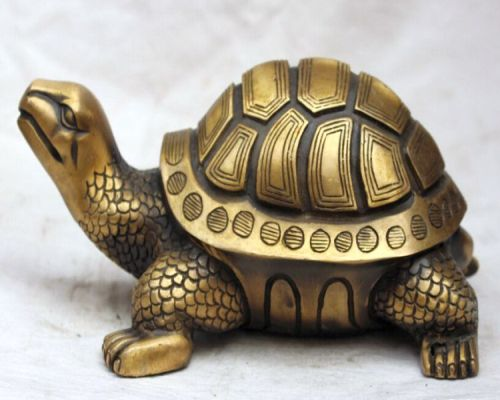 Feng Shui Turtle - Invite Luck And Prosperity In Home