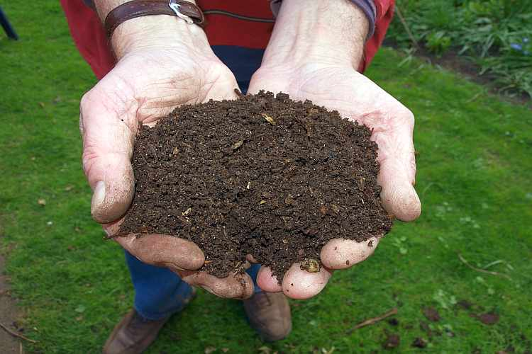 How To Make Compost At Home In 7 Easy Steps – Traditional India Way