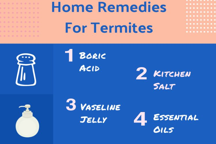 Home Remedies Termite Treatment